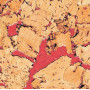 Коркові шпалери HAWAI RED